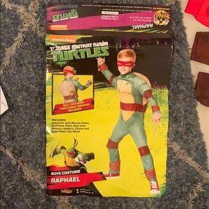 Boys Ninja Turtle Raphael Costume Muscle Arms 4-6